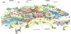 Safari-Cafe-Panorama-Illustrative-Sketch1-e1278600525552