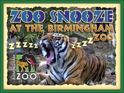 Zoo Snooze