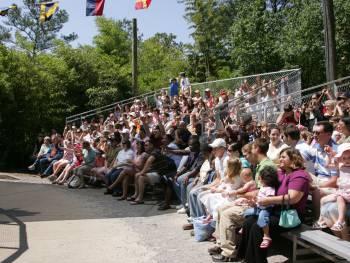 zoo audience
