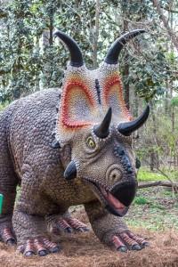 Diabloceratops 004 Birmingham Zoo 3-14-16 (533x800)