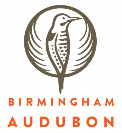 The Birmingham Zoo and Birmingham Audubon are teaming up for our annual  Great Backyard Bird Count! The event unites birdwatchers from across the  globe as ... - Great Backyard Bird Count Birmingham Zoo